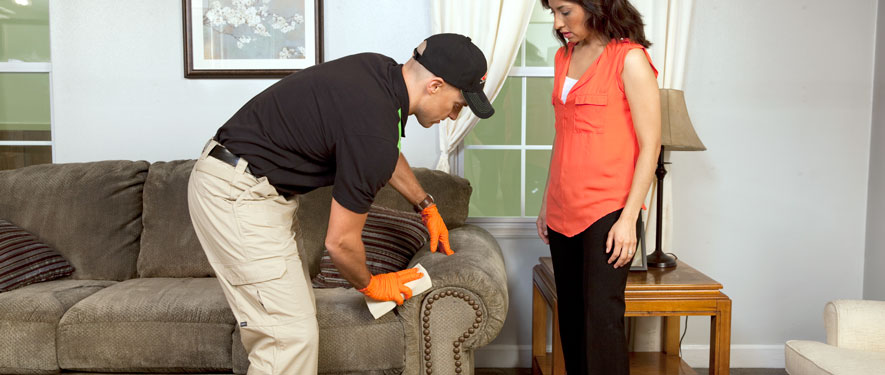 Macon, GA carpet upholstery cleaning